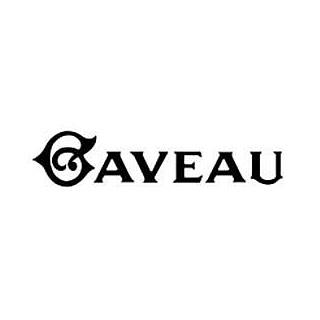 logo-sallegaveau